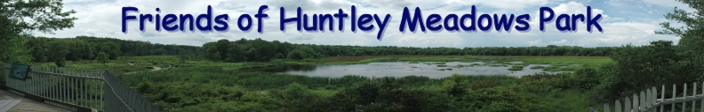 Friends of Huntley Meadows Park